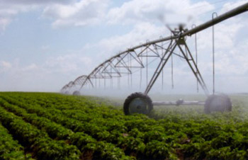 irrigation problems